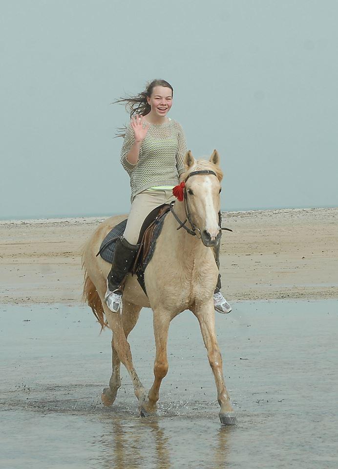 Berberhengst paardrijden