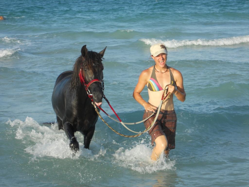 paardrijden water