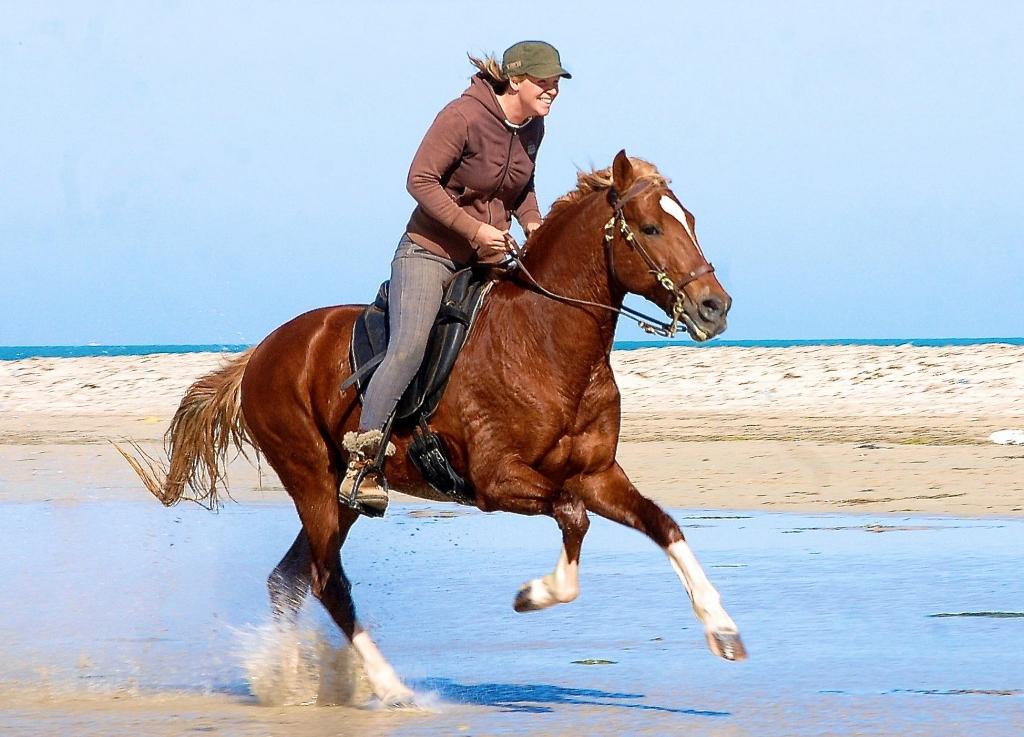 Paardrijden op het strand in Tunesie