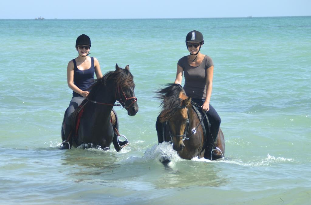 Paardrijvakantie Djerba
