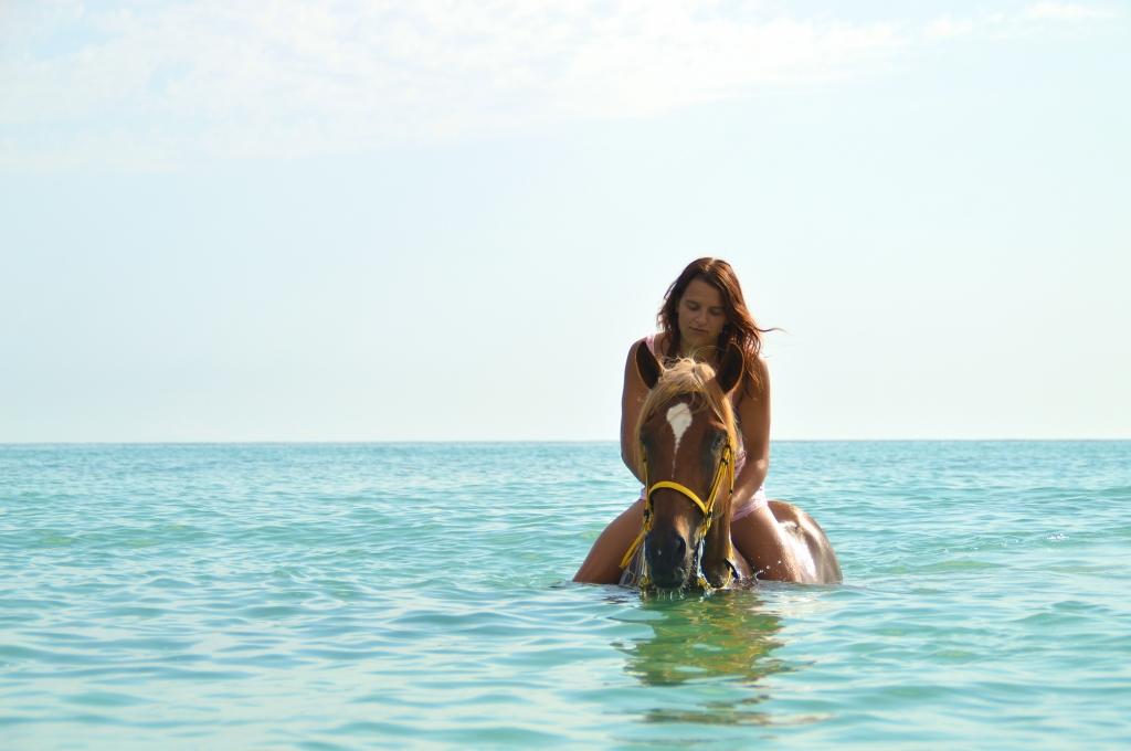 Paardrijden en zwemmen met paarden in Djerba