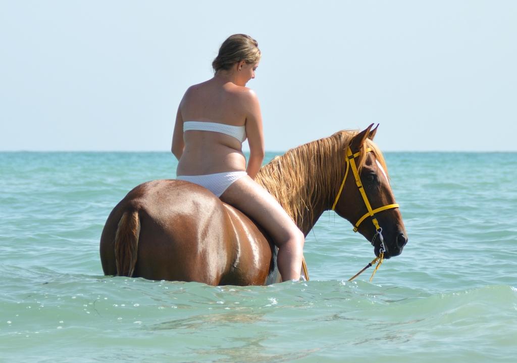 Paardrijden in de zomer