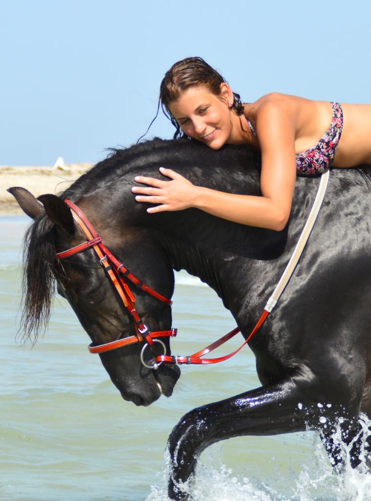 Paardrijvakantie op het strand