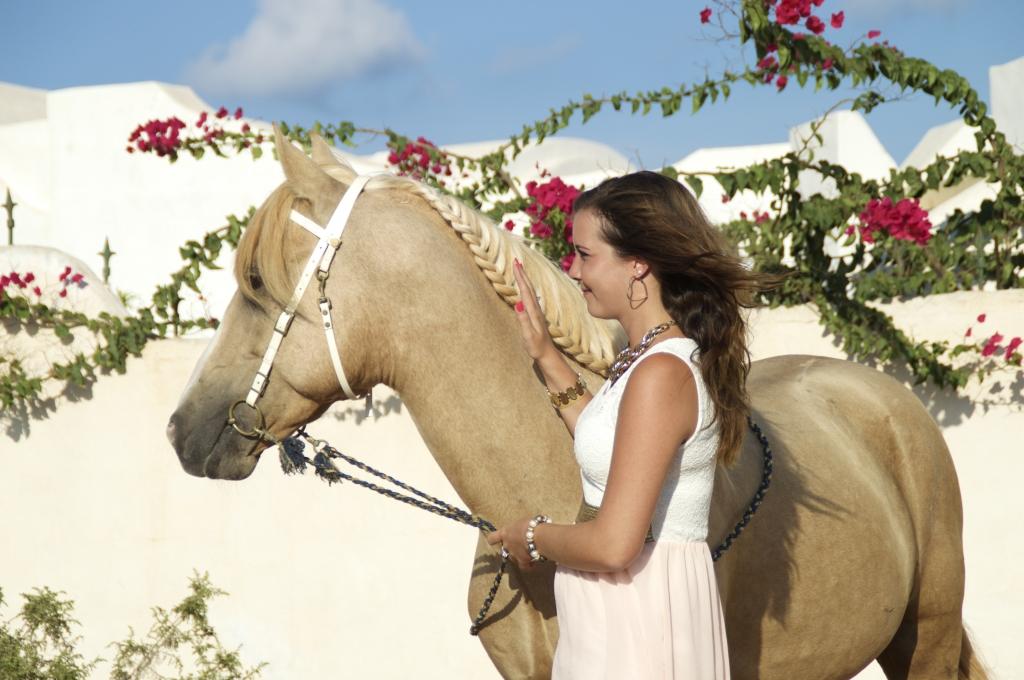 Gast Foto met paard